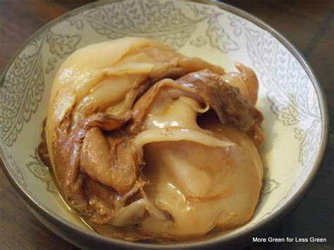 The Ultimate Guide to Figuring Out if Your Kombucha SCOBY
